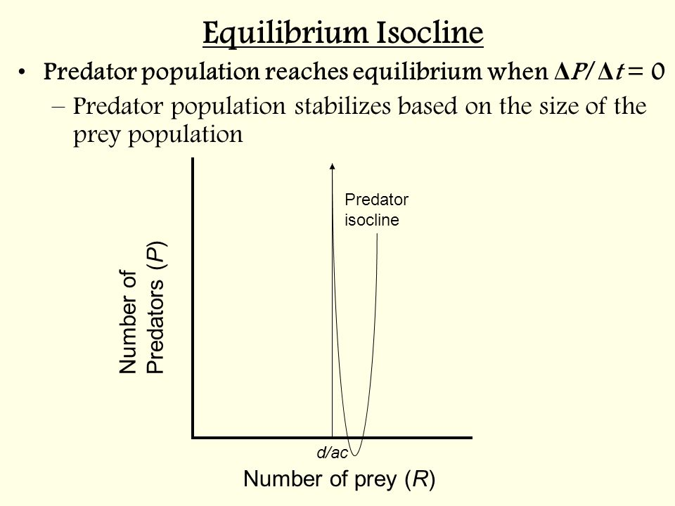 Number of prey (R) Number of Predators ( P ) d/ac Predator isocline Equilibrium Isocline Predator population reaches equilibrium when Δ P/ Δ t = 0 –Predator population stabilizes based on the size of the prey population