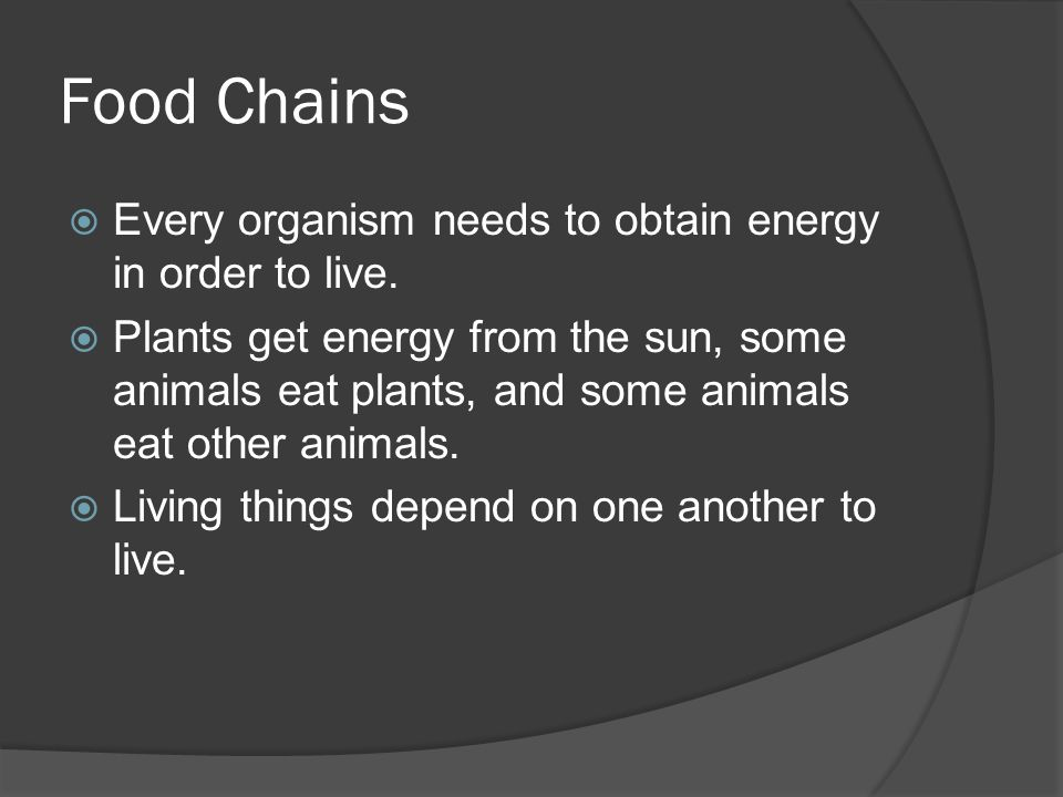 Food Chains  Every organism needs to obtain energy in order to live.