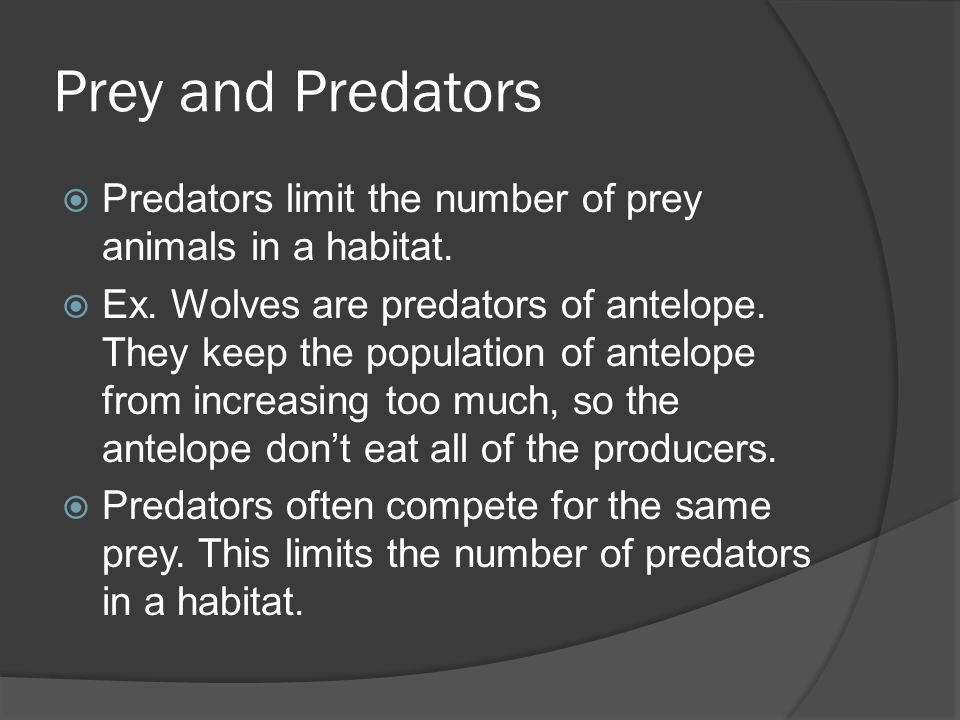 Prey and Predators  Predators limit the number of prey animals in a habitat.