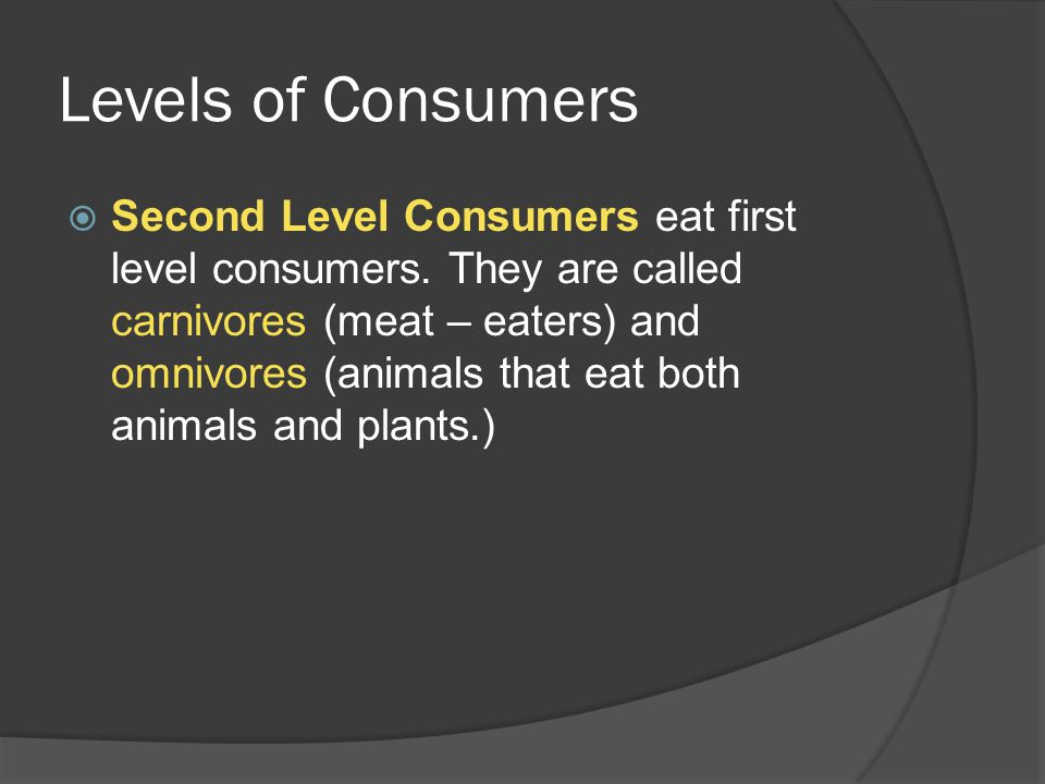 Levels of Consumers  Second Level Consumers eat first level consumers.