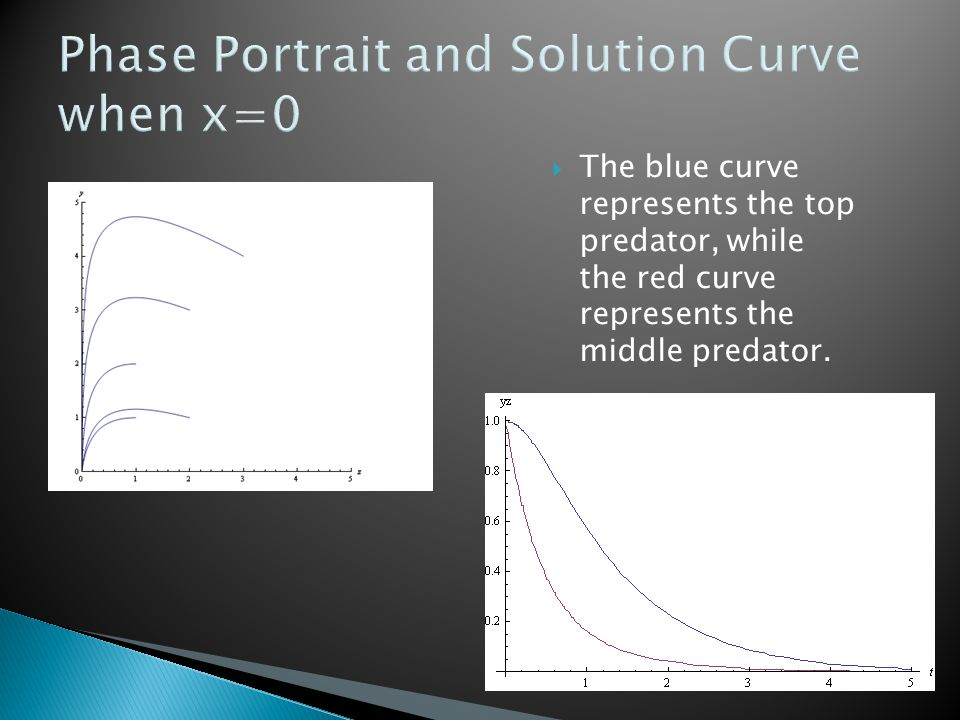 Phase Portrait and Solution Curve when x=0  The blue curve represents the top predator, while the red curve represents the middle predator.