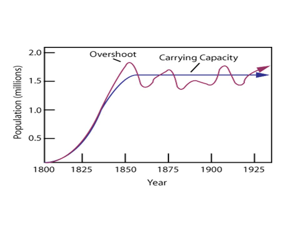 POPULATION GROWTH STAGES 4) DECLINE/DEATH PHASE – Population dies off – May return to lag phase and the cycle may repeat