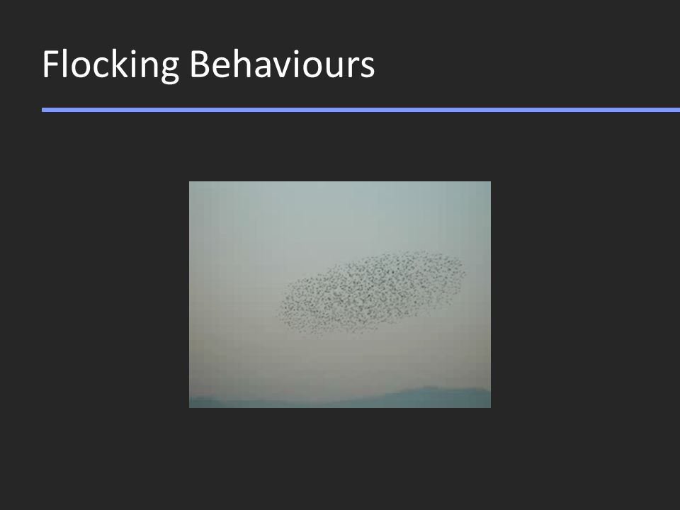 Flocking Behaviours