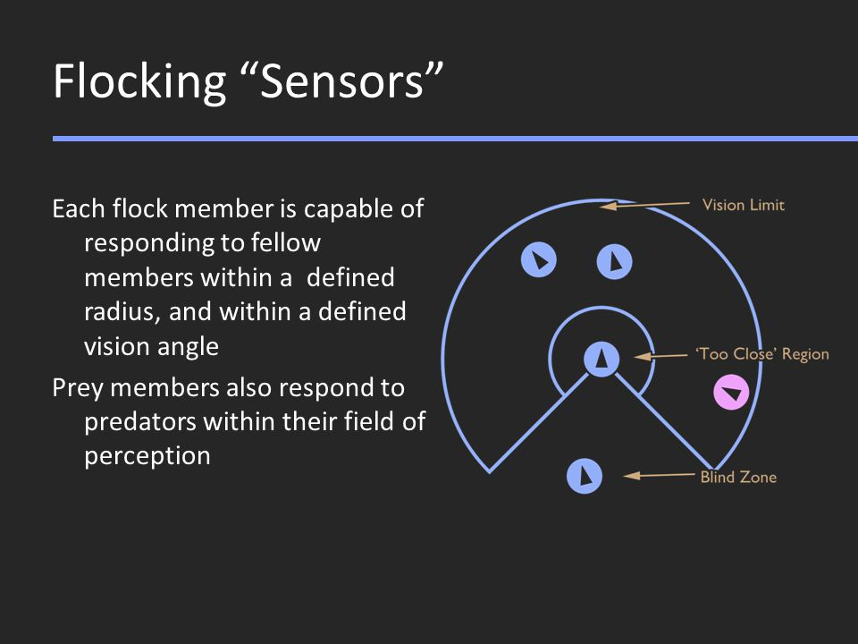 Flocking Sensors Each flock member is capable of responding to fellow members within a defined radius, and within a defined vision angle Prey members also respond to predators within their field of perception