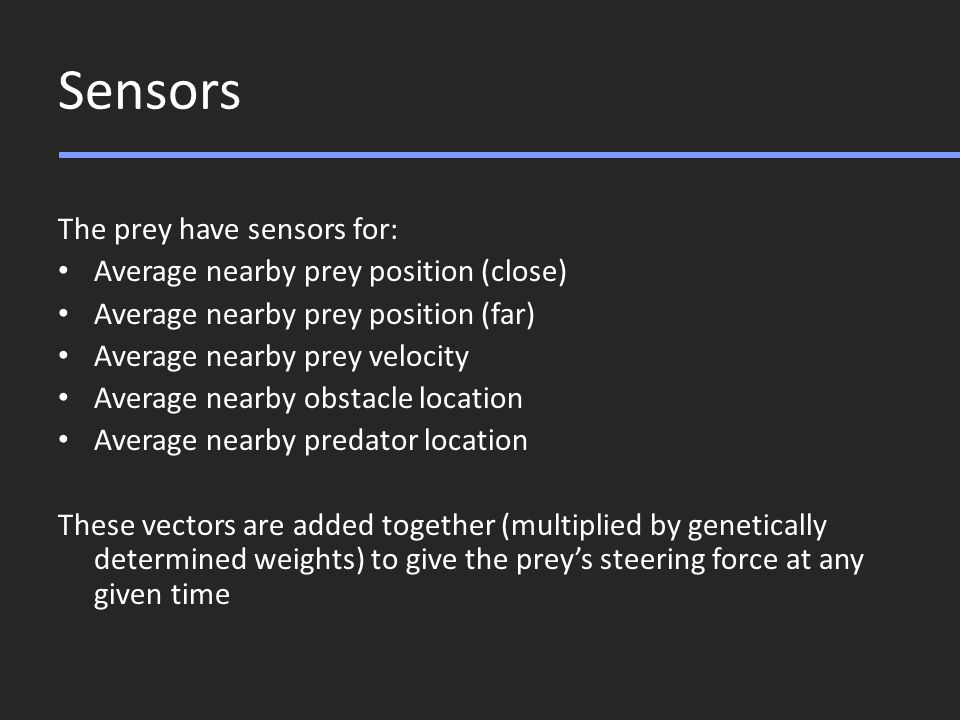 Sensors The prey have sensors for: Average nearby prey position (close) Average nearby prey position (far) Average nearby prey velocity Average nearby obstacle location Average nearby predator location These vectors are added together (multiplied by genetically determined weights) to give the prey's steering force at any given time