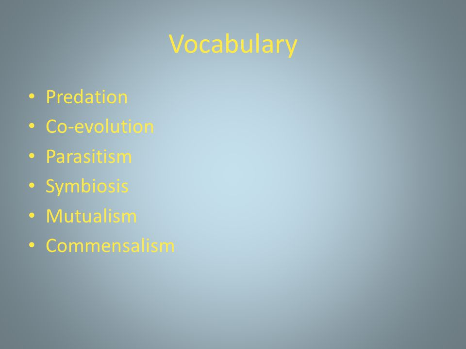 Vocabulary Predation Co-evolution Parasitism Symbiosis Mutualism Commensalism