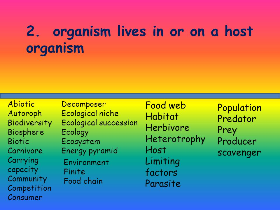 2. organism lives in or on a host organism Decomposer Ecological niche Ecological succession Ecology Ecosystem Energy pyramid Abiotic Autoroph Biodive
