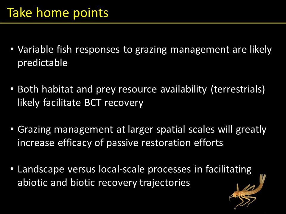Take home points Variable fish responses to grazing management are likely predictable Both habitat and prey resource availability (terrestrials) likely facilitate BCT recovery Grazing management at larger spatial scales will greatly increase efficacy of passive restoration efforts Landscape versus local-scale processes in facilitating abiotic and biotic recovery trajectories