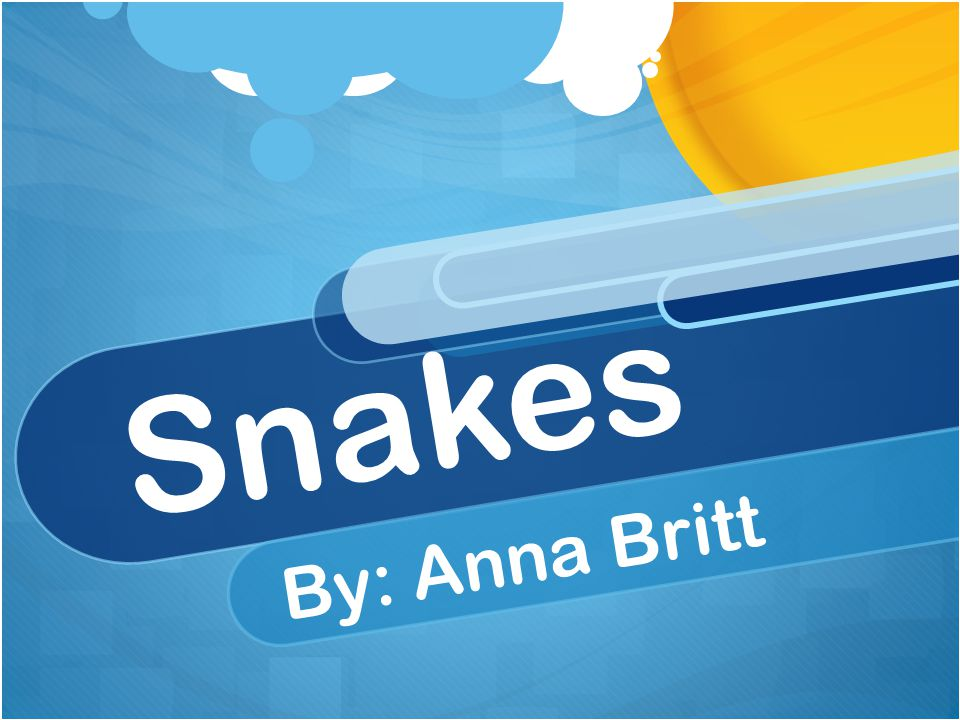Table of contents Chapter 1: How snakes find there habitat.