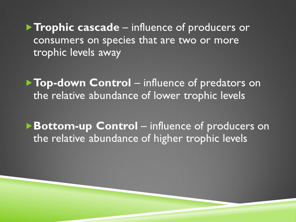  Trophic cascade – influence of producers or consumers on species that are two or more trophic levels away  Top-down Control – influence of predator