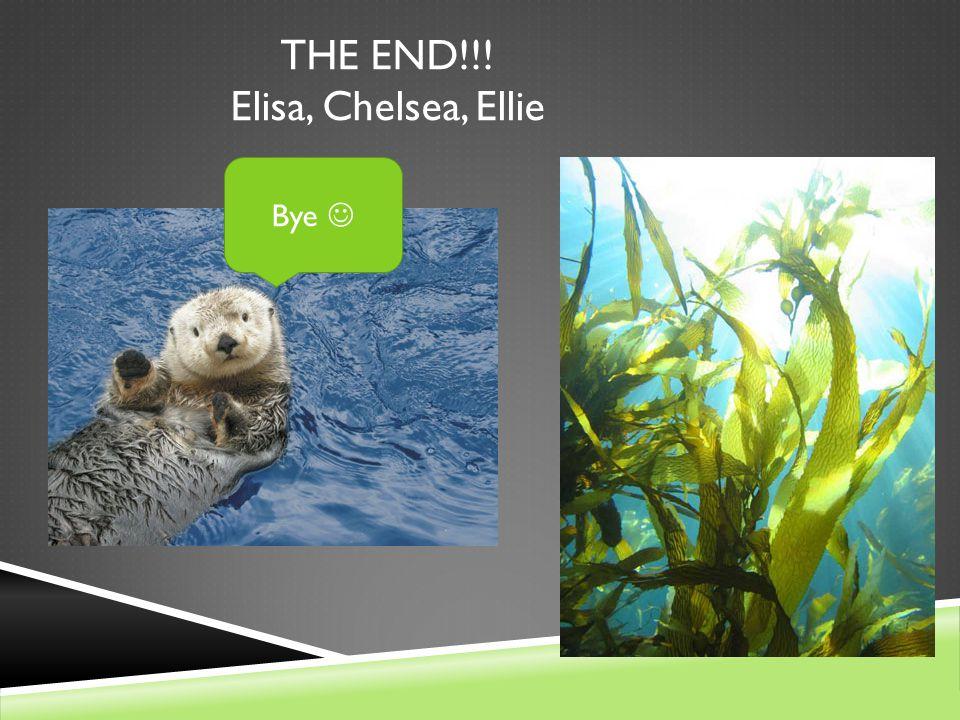 THE END!!! Elisa, Chelsea, Ellie Bye