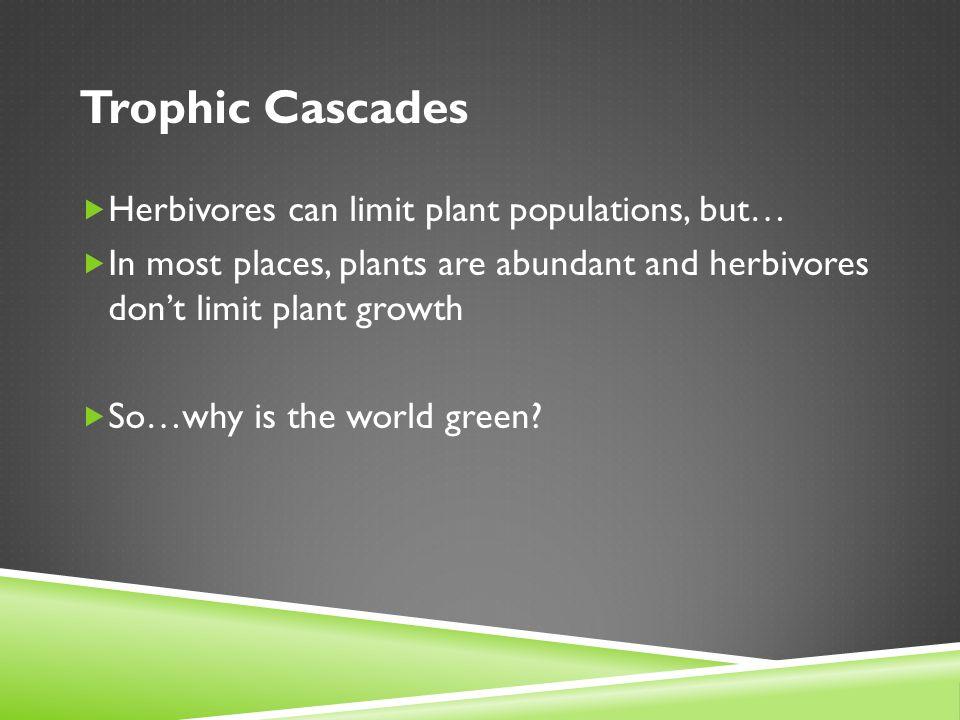Trophic Cascades  Herbivores can limit plant populations, but…  In most places, plants are abundant and herbivores don't limit plant growth  So…why