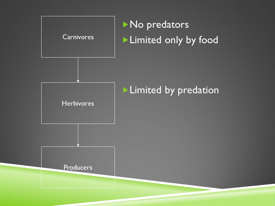 Carnivores Herbivores Producers  No predators  Limited only by food  Limited by predation