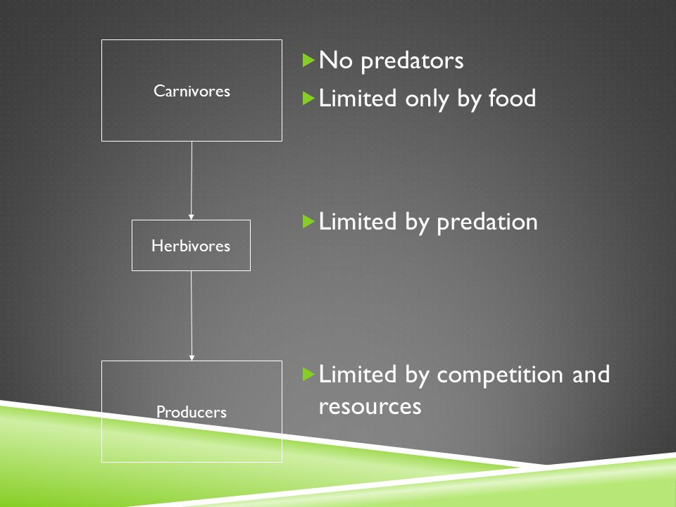 Carnivores Herbivores Producers  No predators  Limited only by food  Limited by predation  Limited by competition and resources
