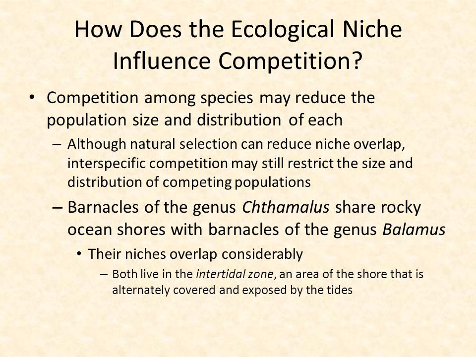 How Does the Ecological Niche Influence Competition? Competition among species may reduce the population size and distribution of each – Although natu