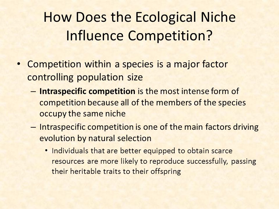 How Does the Ecological Niche Influence Competition? Competition within a species is a major factor controlling population size – Intraspecific compet