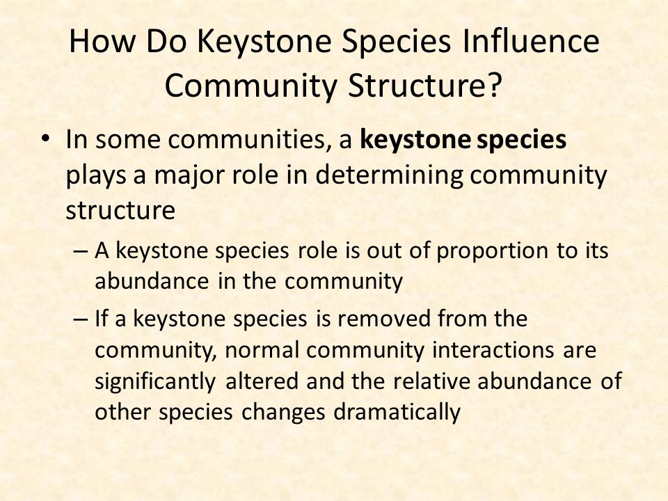 How Do Keystone Species Influence Community Structure? In some communities, a keystone species plays a major role in determining community structure –