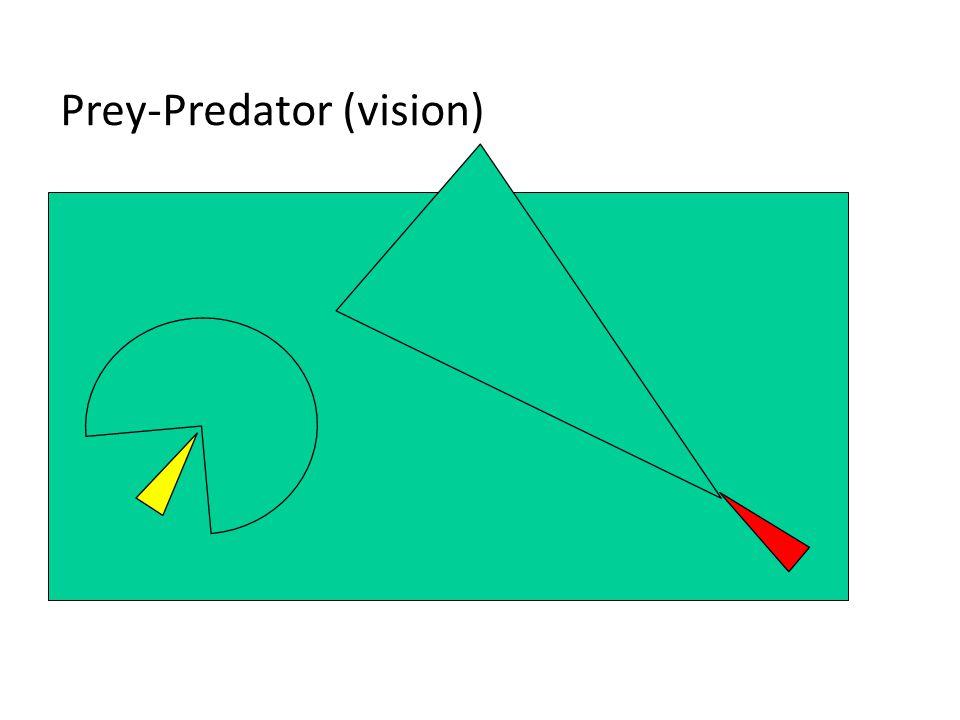 Prey-Predator (vision)