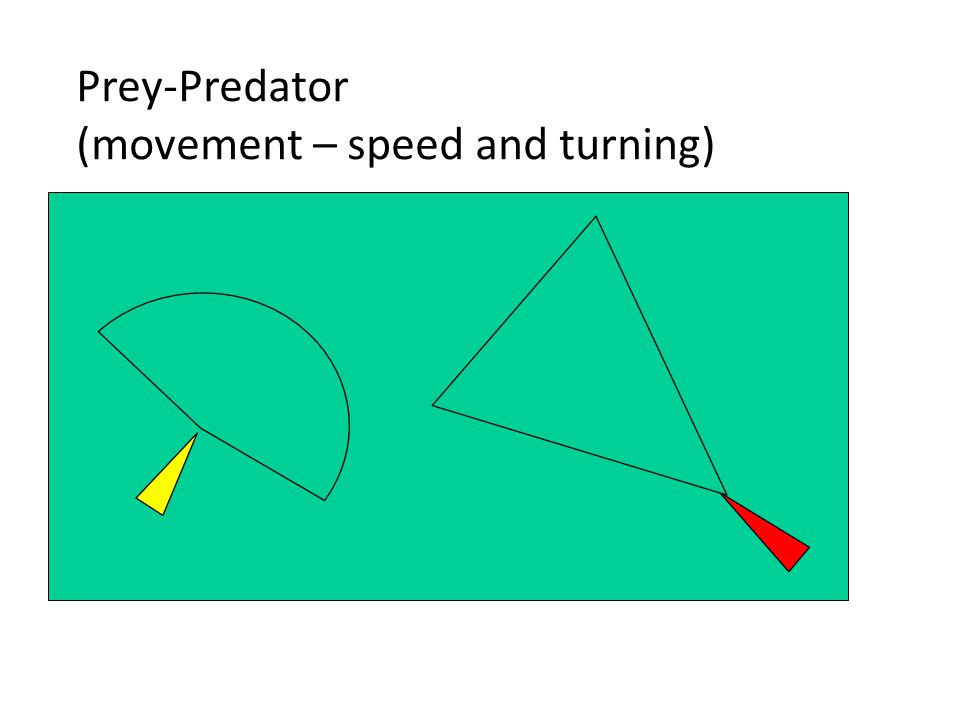 Prey-Predator (movement – speed and turning)