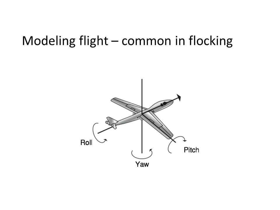 Modeling flight – common in flocking