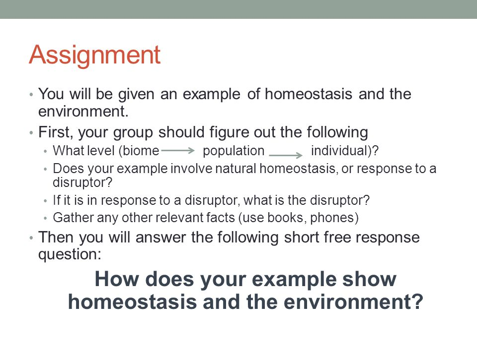 Assignment You will be given an example of homeostasis and the environment.