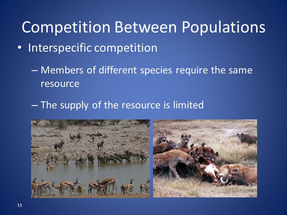 11 Competition Between Populations Interspecific competition – Members of different species require the same resource – The supply of the resource is