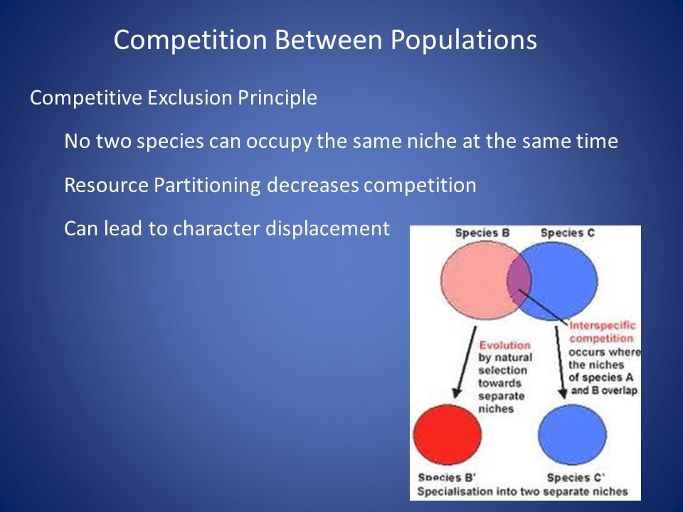 Competitive Exclusion Principle No two species can occupy the same niche at the same time Resource Partitioning decreases competition Can lead to char