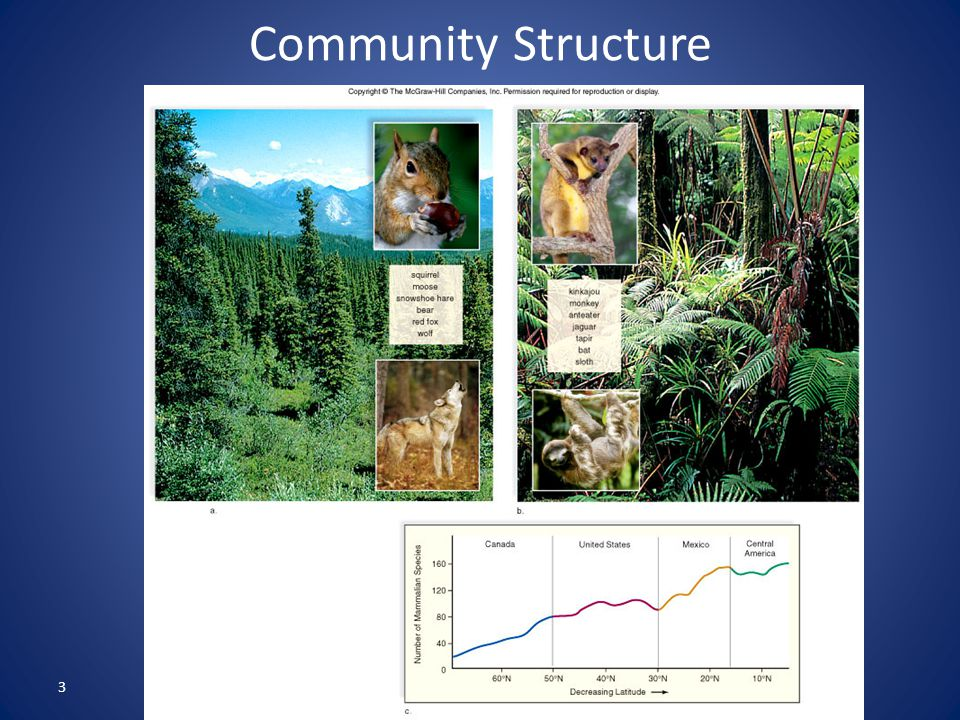 3 Community Structure