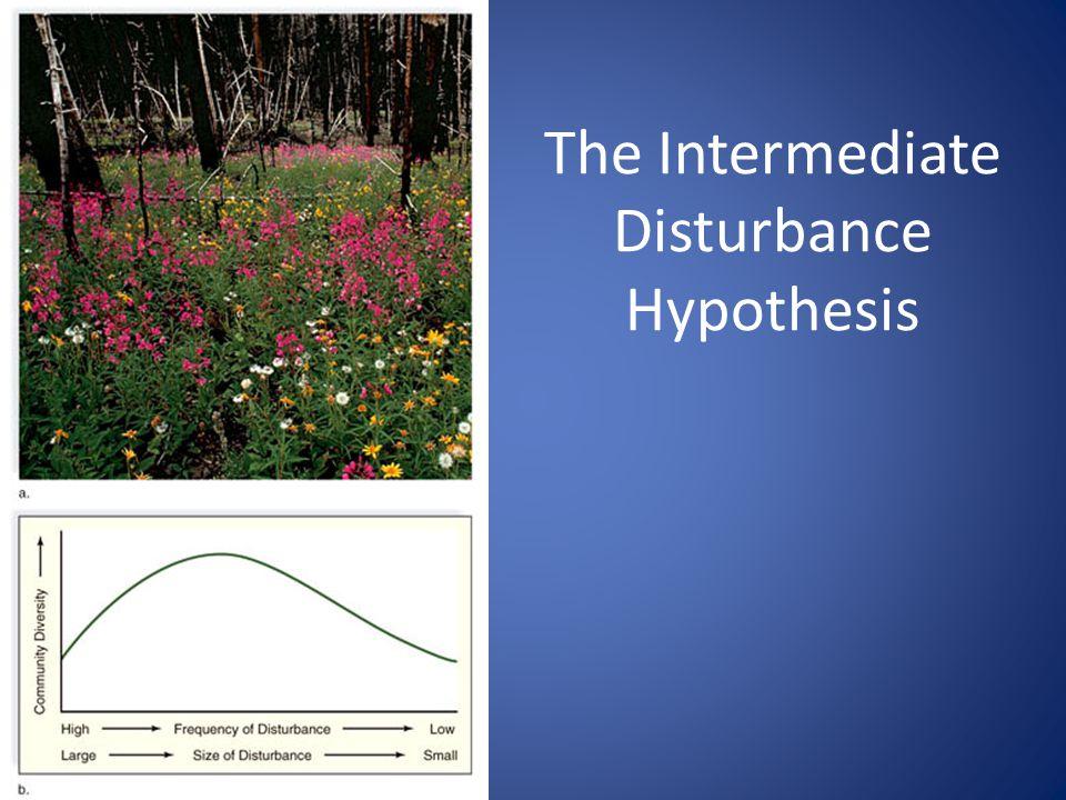 38 The Intermediate Disturbance Hypothesis