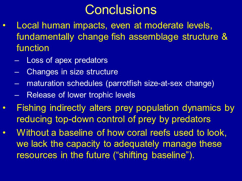 Conclusions Local human impacts, even at moderate levels, fundamentally change fish assemblage structure & function –Loss of apex predators –Changes i