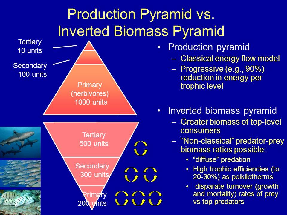 Production Pyramid vs.