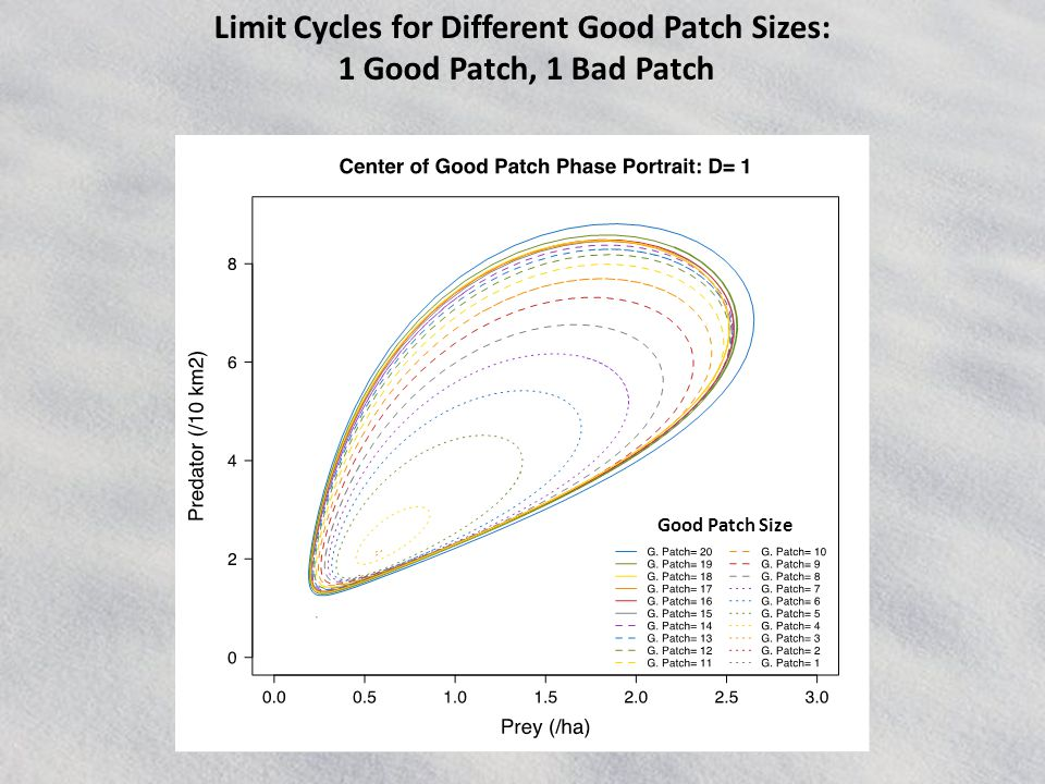 Limit Cycles for Different Good Patch Sizes: 1 Good Patch, 1 Bad Patch Good Patch Size