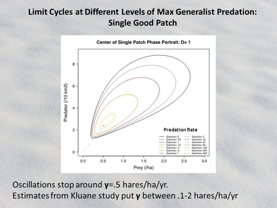 Limit Cycles at Different Levels of Max Generalist Predation: Single Good Patch Predation Rate Oscillations stop around γ=.5 hares/ha/yr.