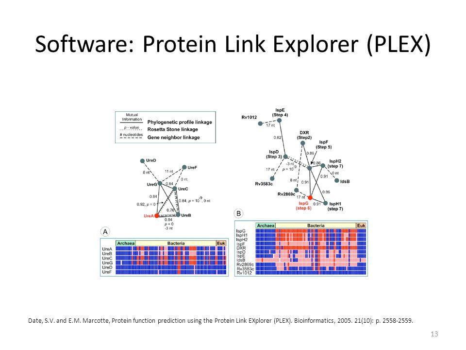 Software: Protein Link Explorer (PLEX) 13 Date, S.V.