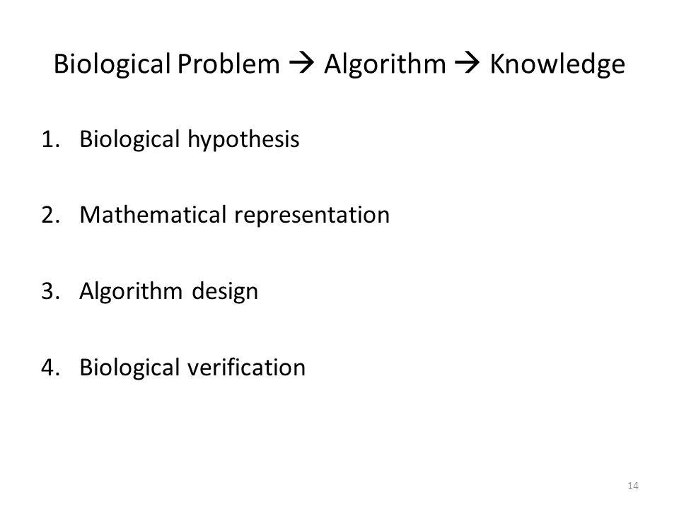 Biological Problem  Algorithm  Knowledge 1.Biological hypothesis 2.Mathematical representation 3.Algorithm design 4.Biological verification 14