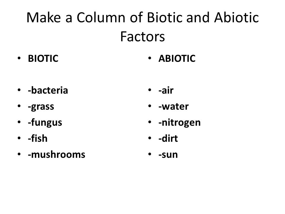 Make a Column of Biotic and Abiotic Factors BIOTIC -bacteria -grass -fungus -fish -mushrooms ABIOTIC -air -water -nitrogen -dirt -sun