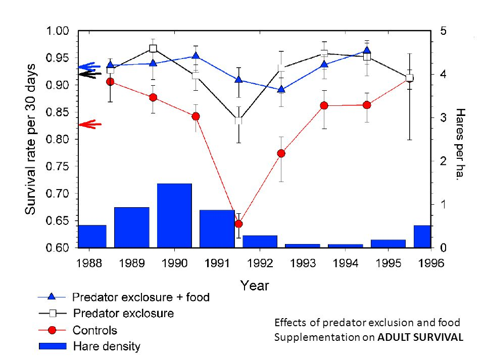 Effects of predator exclusion and food Supplementation on ADULT SURVIVAL