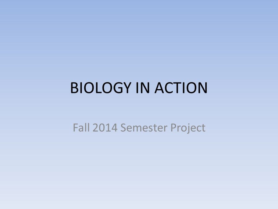 BIOLOGY IN ACTION Fall 2014 Semester Project