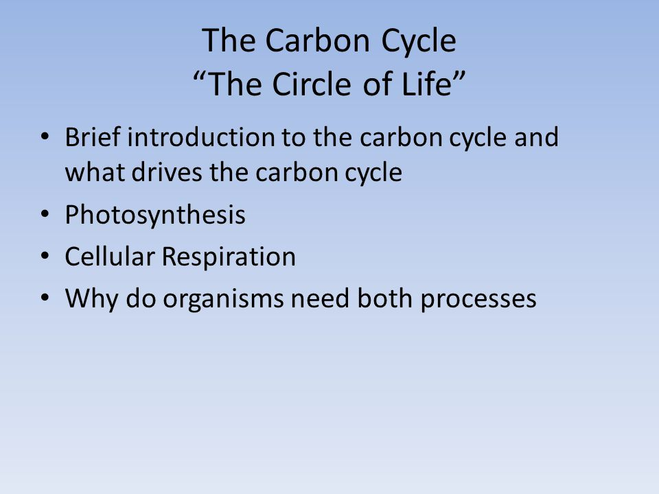 The Carbon Cycle The Circle of Life Brief introduction to the carbon cycle and what drives the carbon cycle Photosynthesis Cellular Respiration Why do organisms need both processes