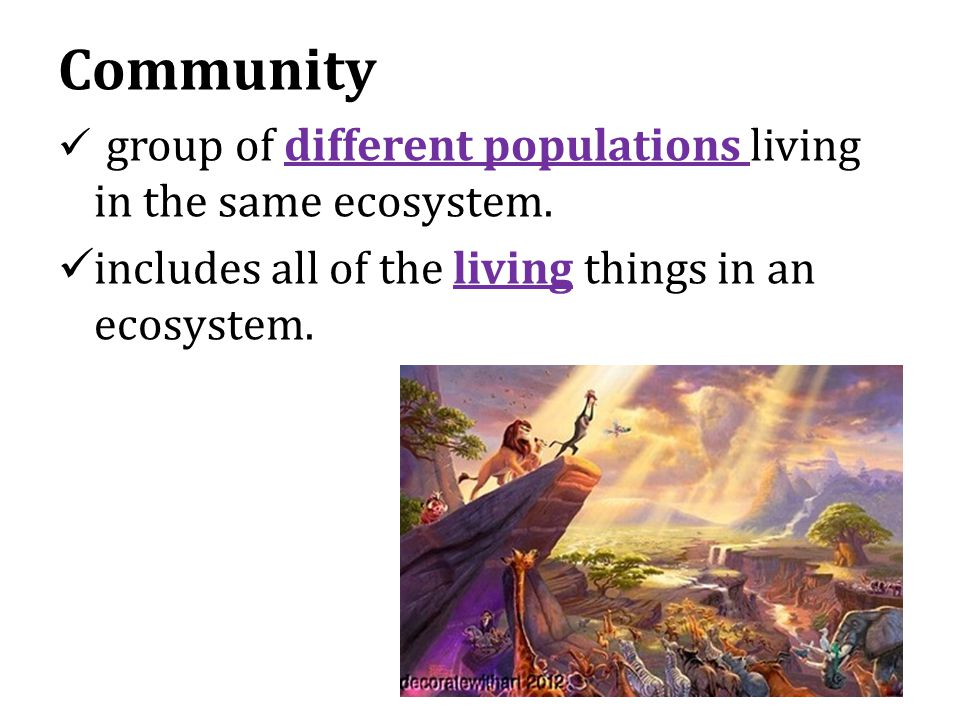 Community group of different populations living in the same ecosystem.