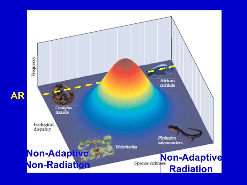 AR Non-Adaptive Radiation Non-Adaptive Non-Radiation