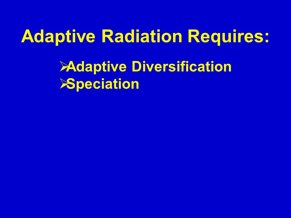 Adaptive Radiation Requires:  Adaptive Diversification  Speciation