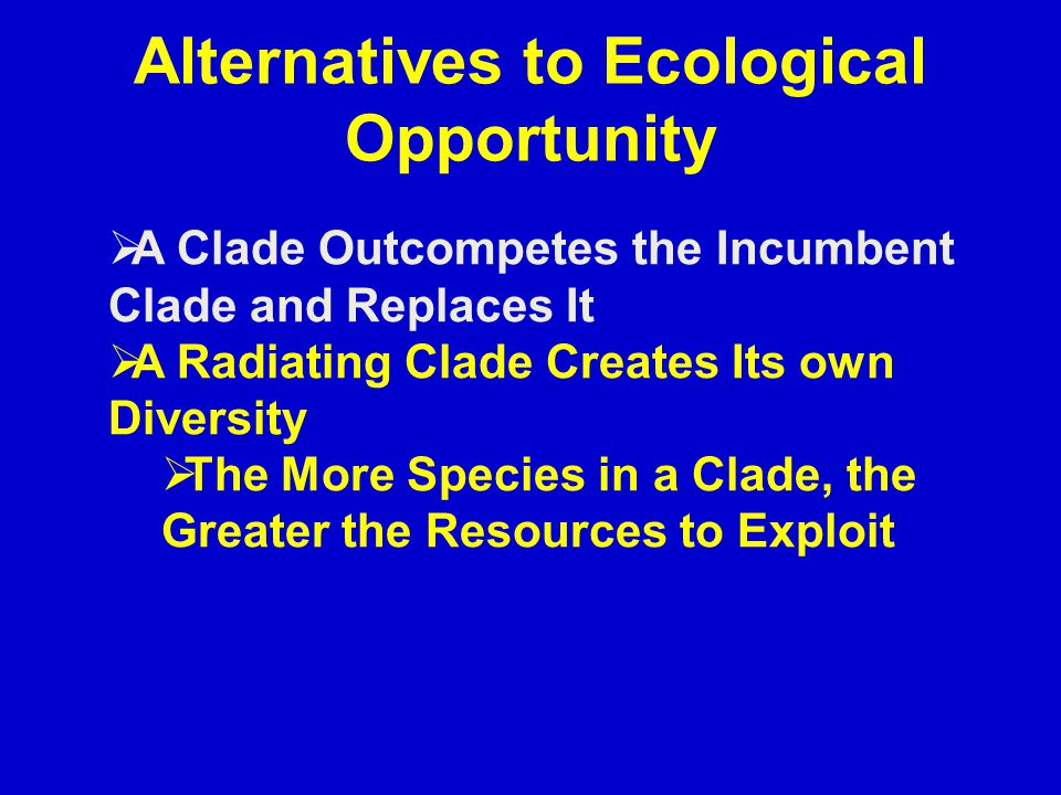 Alternatives to Ecological Opportunity  A Clade Outcompetes the Incumbent Clade and Replaces It  A Radiating Clade Creates Its own Diversity  The M