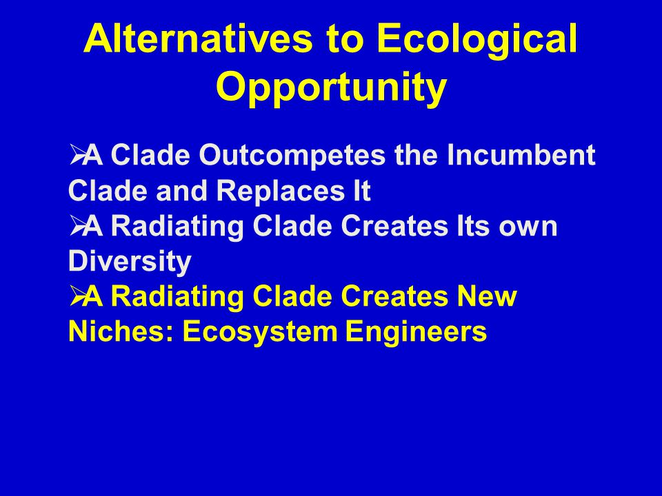 Alternatives to Ecological Opportunity  A Clade Outcompetes the Incumbent Clade and Replaces It  A Radiating Clade Creates Its own Diversity  A Radiating Clade Creates New Niches: Ecosystem Engineers