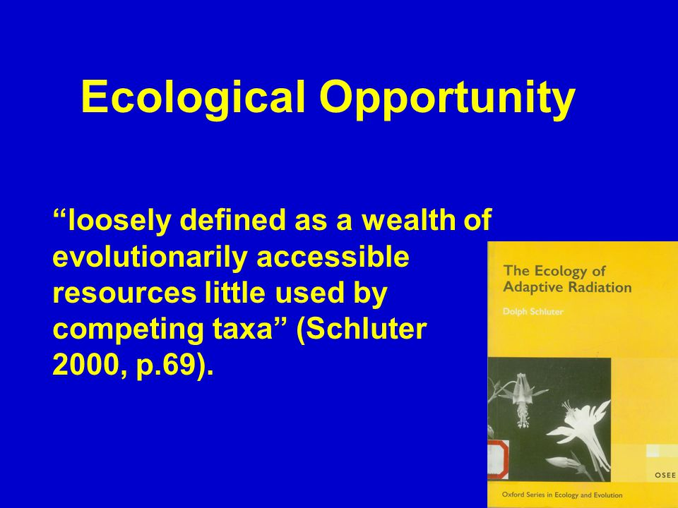 Ecological Opportunity loosely defined as a wealth of evolutionarily accessible resources little used by competing taxa (Schluter 2000, p.69).