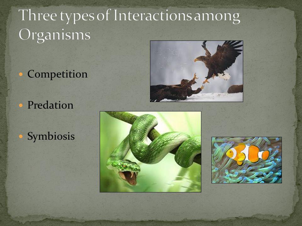 Competition Predation Symbiosis