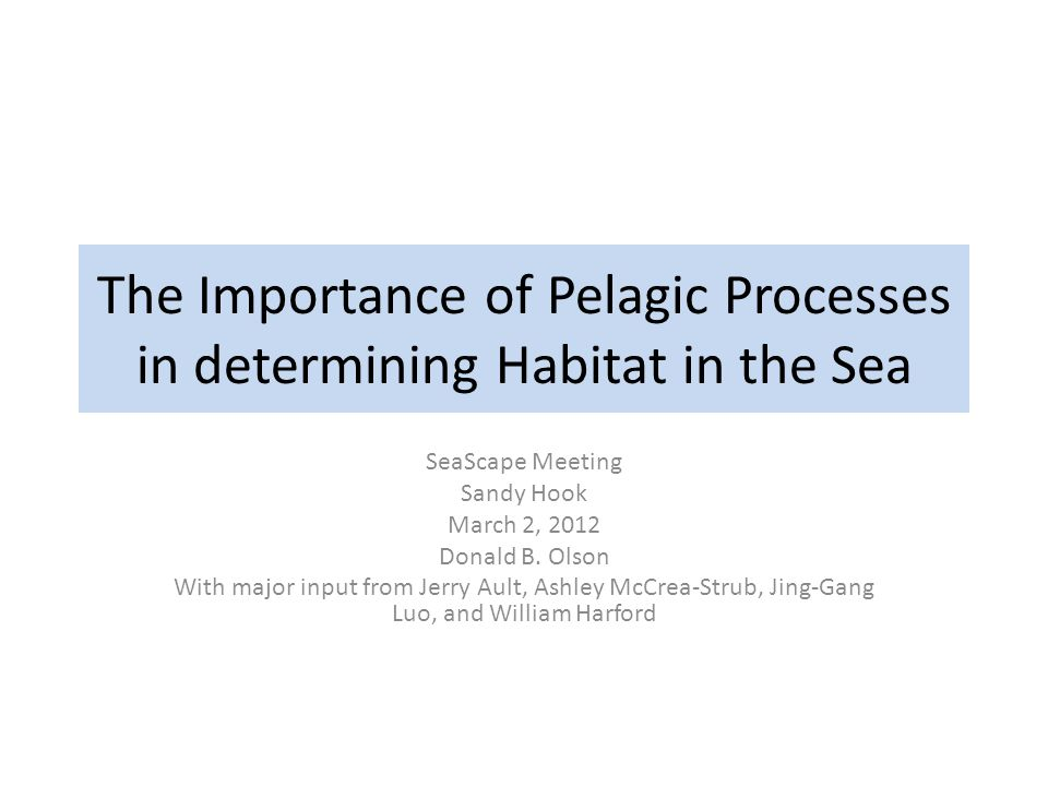 The Importance of Pelagic Processes in determining Habitat in the Sea SeaScape Meeting Sandy Hook March 2, 2012 Donald B. Olson With major input from