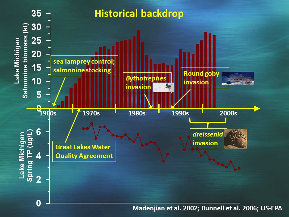 Historical backdrop 1960s1970s1980s1990s2000s sea lamprey control; salmonine stocking Great Lakes Water Quality Agreement Madenjian et al.