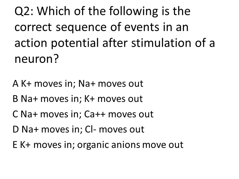 Which of the following offers the best description of neural transmission across a mammalian synaptic gap? (A)Neural impulses involve the flow of K+ a