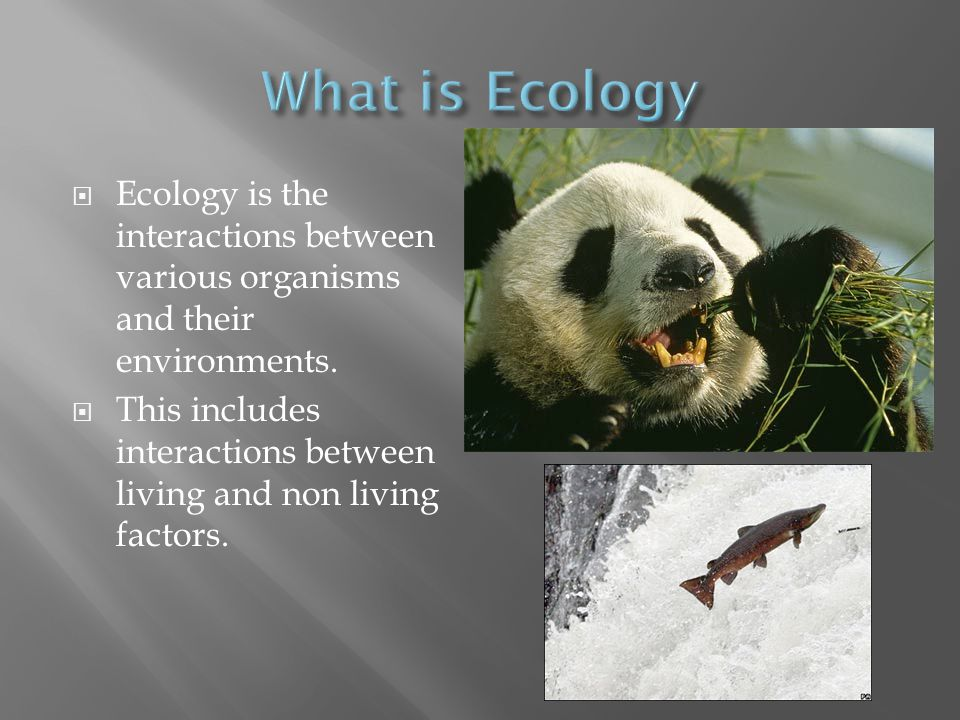  Ecology is the interactions between various organisms and their environments.  This includes interactions between living and non living factors.